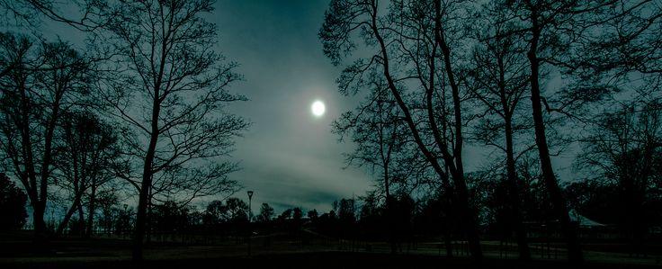 Kaivopuisto by Graziella Serra Art & Photo on 500px