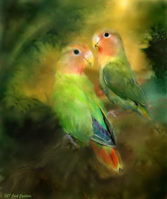 Птички картинки красивые обои на телефон художников, доброе