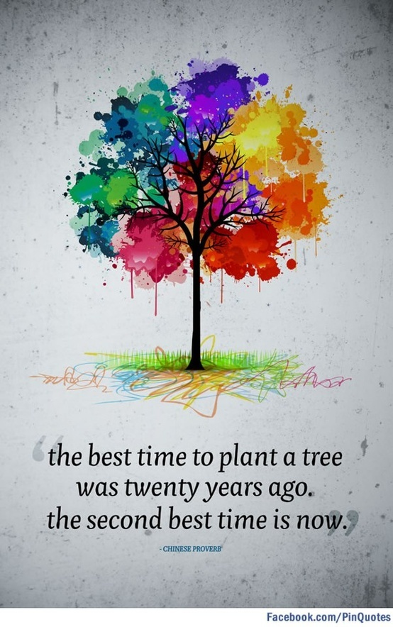 """""""The best time to plant a tree was twenty years ago. The second best time is now."""" Chinese Proverb."""