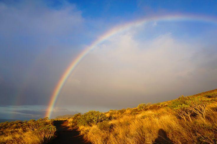 a good morning rainbow