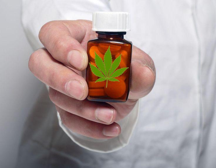 """A Magyar Orvosi Kannabisz Egyesület (MOKE) azt tűzte ki céljául, hogy """"elősegítsék a kannabisz növénnyel és annak hatóanyagaival végzett hivatalos orvosi és gyógyászati alkalmazások terjesztését"""". Jelenleg a legnagyobb kihívás az orvosok meggyőzése arról, hogy legalább a törzskönyvezett kannabisz-tartalmú gyógyszereket hajlandók legyenek felírni."""
