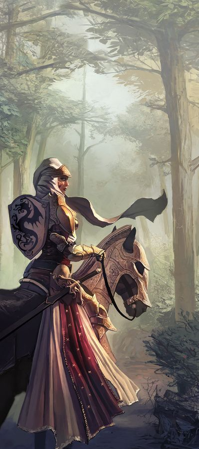 Imgur: The most awesome images on the Internet. female knight mounted