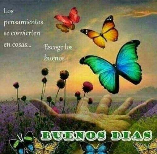 Buenos Dias  http://enviarpostales.net/imagenes/buenos-dias-1098/ Saludos de Buenos Días Mensaje Positivo Buenos Días Para Ti Buenos Dias