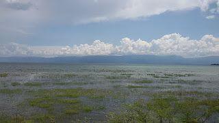 Argonaut: Danau Poso, danau ketiga terbesar di Indonesia