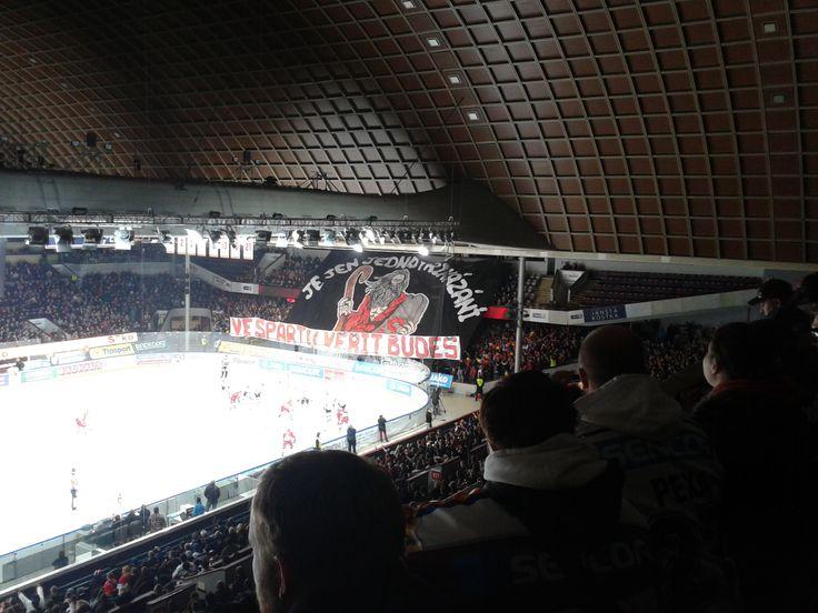 Z derby - #HCSparta vs. Slavia