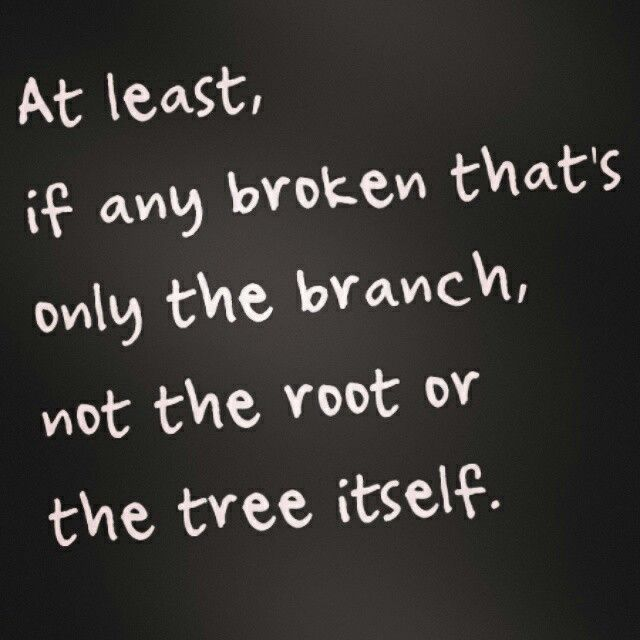The tree is you!