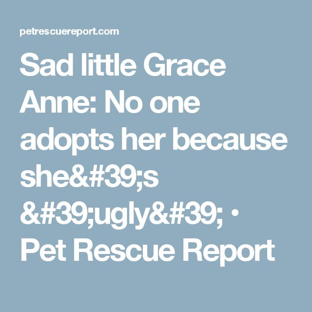 Sad little Grace Anne: No one adopts her because she's 'ugly' • Pet Rescue Report