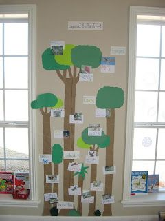 Mural of rainforest animals and what level of the rainforest they live in.
