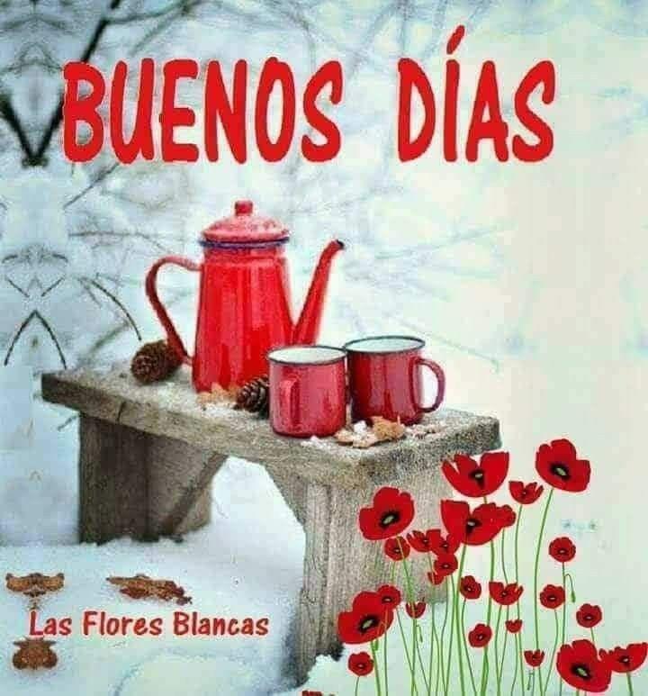 Pin de Vanesa en Buenos días | Saludos de buenos dias, Imágenes de buenos  días, Imagenes de buenos
