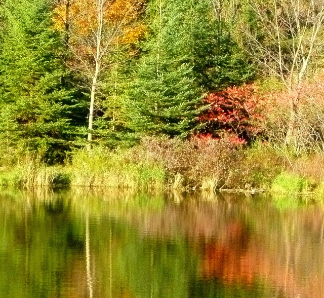 "This is Christie Lake, near Dundas, Ontario during the fall season - gorgeous foliage! ""Christie Lake Colours by Frank Bourne"""