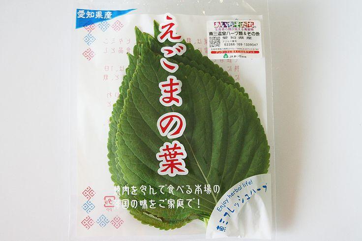 「エゴマの葉」 紫蘇の変種で韓国料理に使用される香味野菜です。 通常の胡麻とは異なります。  天ぷらやキムチ漬けに醤油漬け、焼き肉巻いたりご飯を包んで食べます。  また、種子から搾った油「えごま油」は、昔、灯明油など暮らしの中で利用されてきましたが、現在では食用油として使われています。