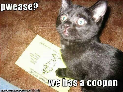 Pwease? We has a coopon. #cute #kitten #cat #meme #lolcat More