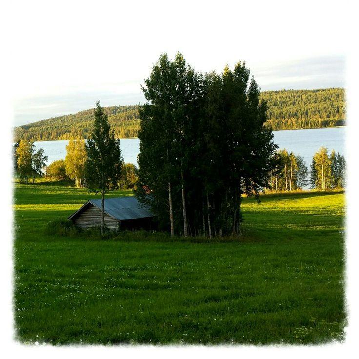 Marsätt, Jämtland by Lilian