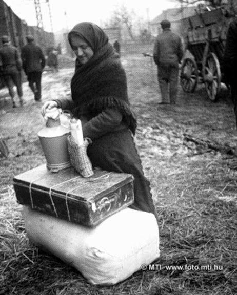 Kitelepülő magyarországi németek Békásmegyer, 1946