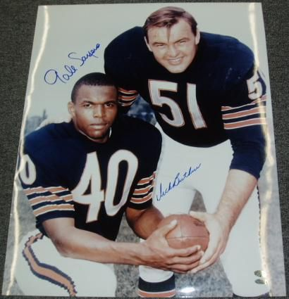 Brian Piccolo And Gale Sayers People I Admire Brian
