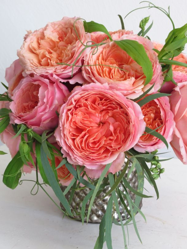 I love antique roses.  IMO they surpass all of the modern hybrids.