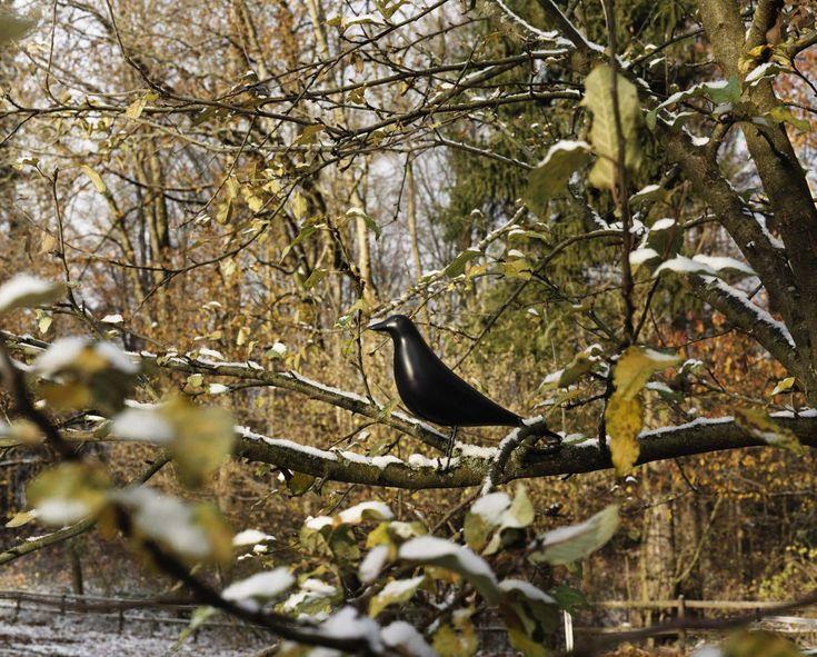 Figura czarnego, drewnianego ptaka stała w pokoju Eamesów przez ponad 50 lat. Opierając się na oryginalnym artefakcie i we współpracy z rodziną Eamesów, Vitra wyprodukowała pierwszą serię tej figurki. http://www.atakdesign.pl/pl/p/Eames-House-Bird/471