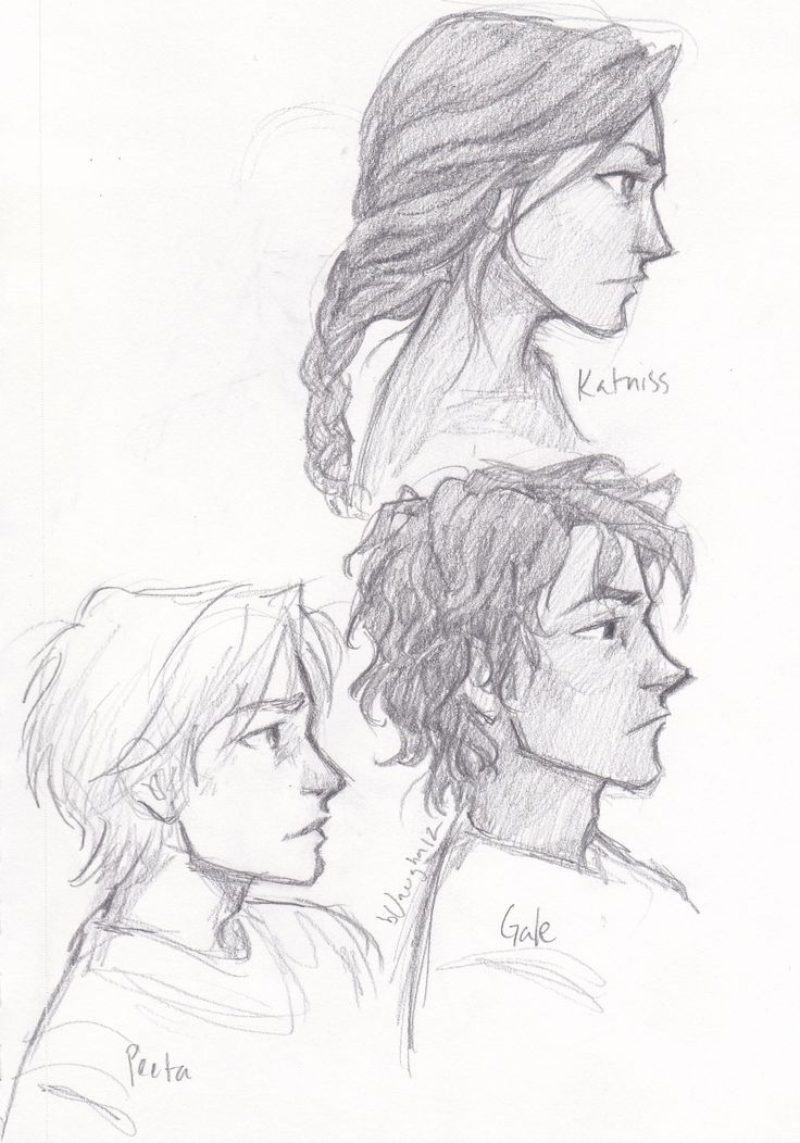 Katniss, Peeta and Gale. Definitely how I imagined them. Love this artist.