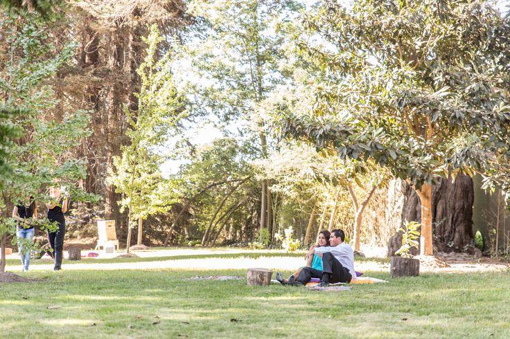 Viluco, Buin en Buin, Metropolitana de Santiago de Chile