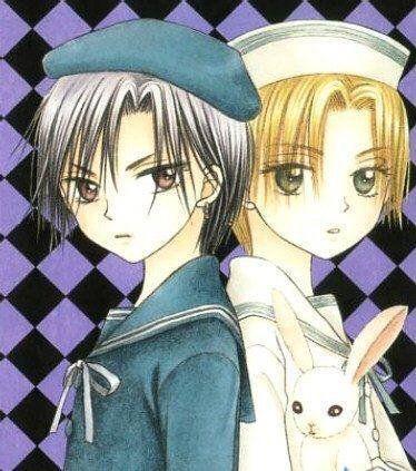 Gakuen Alice - Natsume Hyūga, Luca Nogi