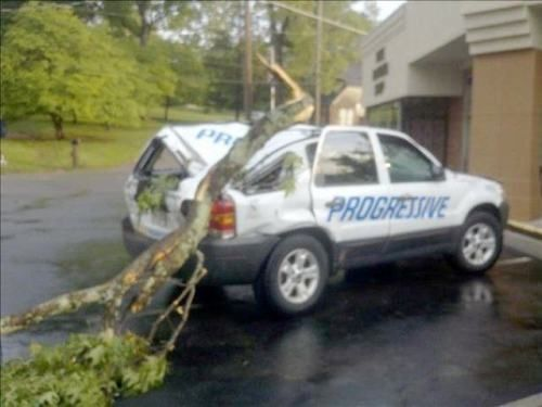 erm... i hope they have insurance!