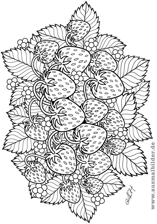 fruit coloring pages for adults | 1000+ images about fruits and vegetables on Pinterest ...