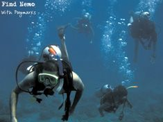 We offer our divers an unparalleled choice of dive travel in India. This 4 day course gets you an internationally valid SSI or PADI certification card, which will allow you to dive anywhere in the world. http://www.pugmarks123.com/be-a-certified-scuba-diver.html