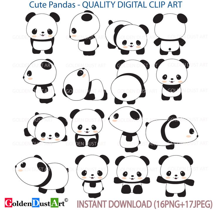 A personal favorite from my Etsy shop https://www.etsy.com/listing/270248037/20-off-cute-pandas-clip-art-panda-clip