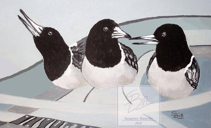 Three Singing Butcher Birds, cheerful bird poster, Wall Art, Home decor, modern, edgy, Black and White Print of Original, Wall art, A5,A4,A3 by ArtiSueBee on Etsy