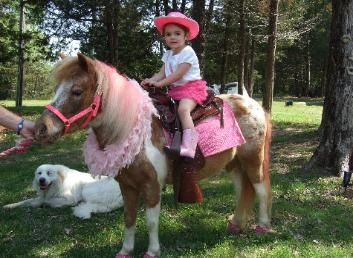 Pony Rides are always a bit hit at a pony party.  Whispering Horse Ranch Arkansas, pony rental, rides, birthday, party, parties, pony's