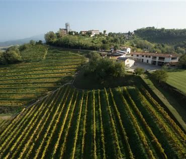 list of the wineries and farms that you can visit this week without any reservation in Friuli Venezia Giulia region