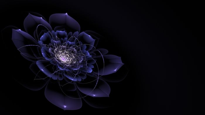 Fraktalion fractals apophysis