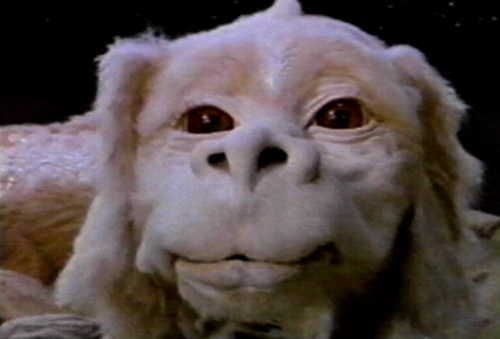 Falcor* From The Neverending Story