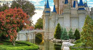 Sometimes having a pleasant day at Disney World requires knowing what NOT to do as much as it does knowing what to do. Some Disney bits of wisdom are simply common sense while others are common courtesy. Nonetheless, many Disney guests are clueless about many of them. Here are a few things that Disney Insiders…