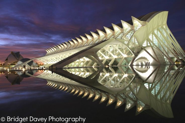 Valencia City of Arts and Science | Spain by Bridget Davey on 500px