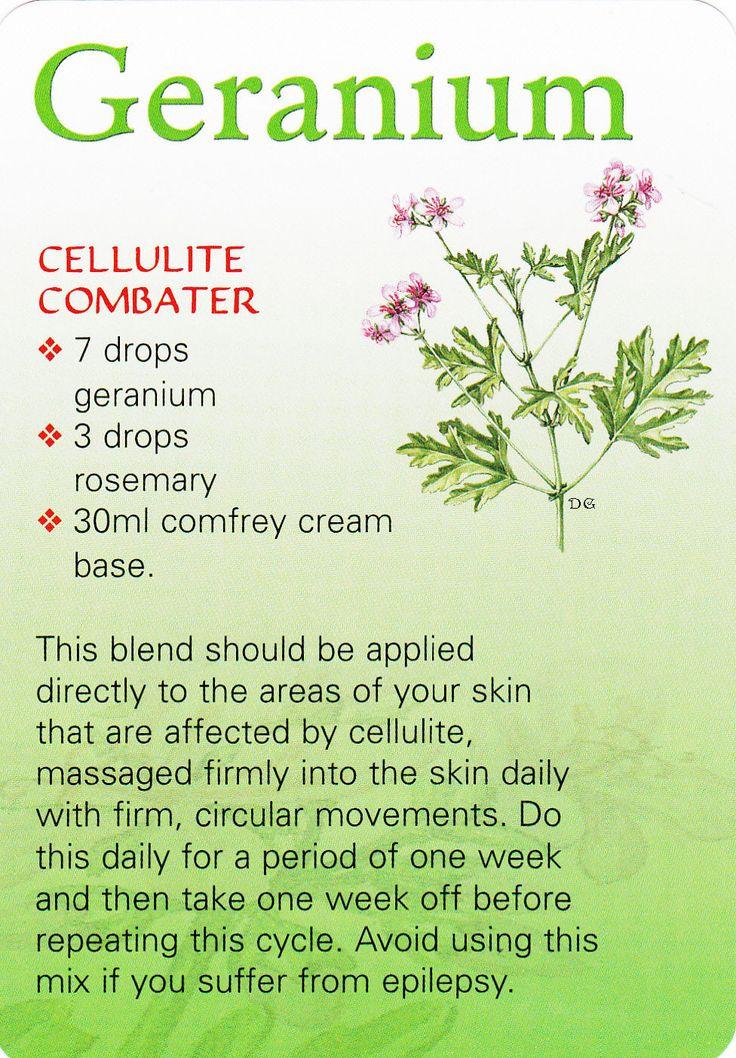 Geranium oil Celulite Combater Aceite esencial de geranio para combatir celulitis. Romero y geranio. Consigue aquí los aceites que necesitas 100% puros y naturales http://www.mydoterra.com/conocedoterra/