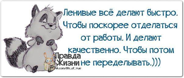 Прикольные фразочки в картинках №061213 » RadioNetPlus.ru развлекательный портал
