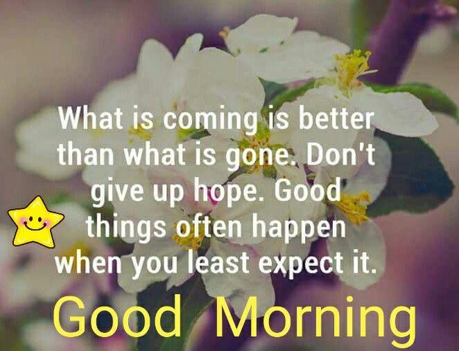 [Image: 9681e46b5fe20c72c87c54f6192cc108--good-morning.jpg]