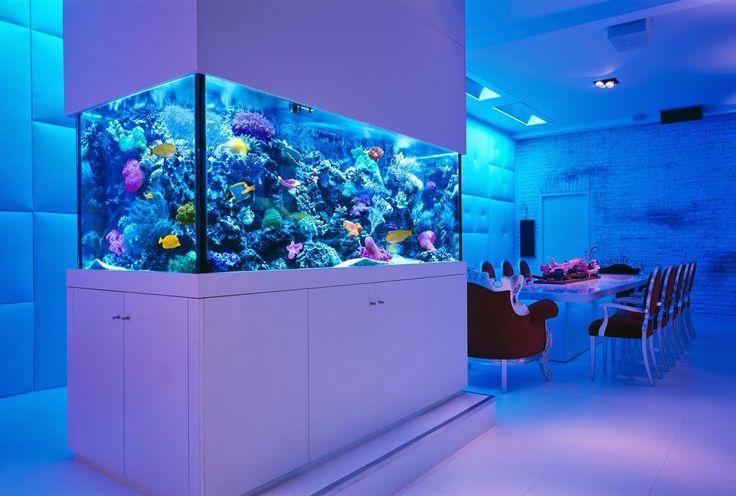 aquário na sala de jantar
