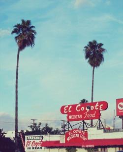 el coyote..heaven