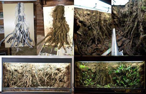 Home Made Tree Frog Terrarium Ideas Lark Blog Ideas
