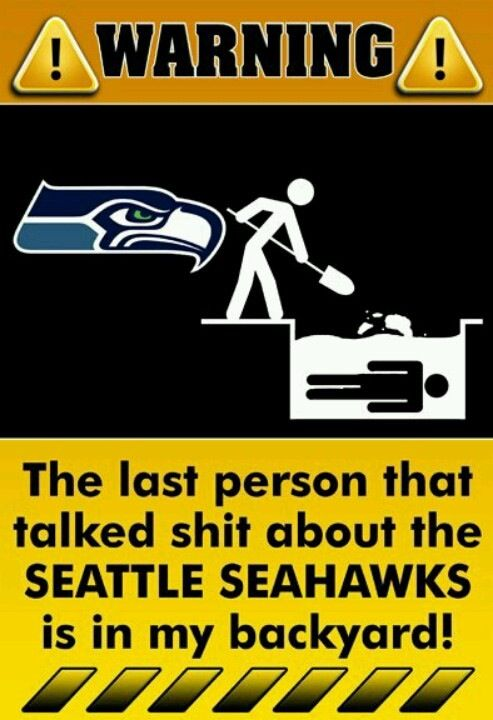 Seattle Seahawks picture