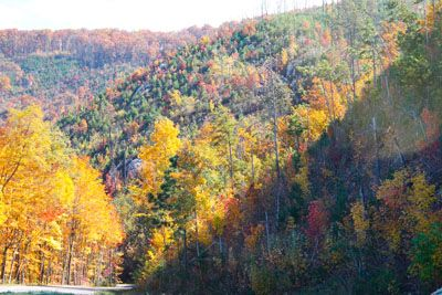A perfect drive from I-40 to The Old Mill through the Great Smoky Mountains National Park.  7 of 8 road trip photos.