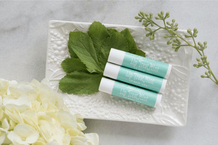 Joyous Lip TreatMint LipBalm –  free from: PEG, Parabens, Propylene Glycol, Alcohol or Ethanol, Aluminum & Synthetic Fragrance. Always.  GMO-free | Gluten-free | Biodegradable | Not Tested on Animals