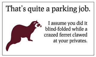 Bad Parking Cards! hehe* I need some of these to put out!