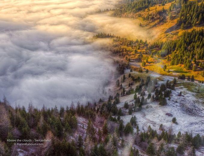 "Photo ""Winter,spring,summerorautumn?"" by KarimKanounPhotography"