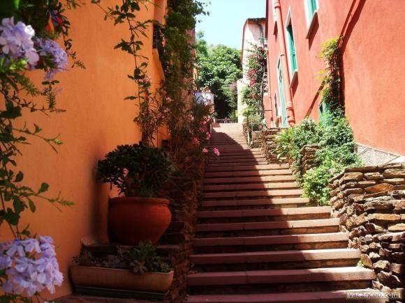 Collioure, France -- rue de Collioure ...
