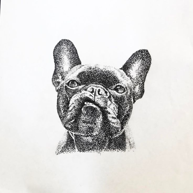 "112 Likes, 5 Comments - Jmunz (@dot.tattoos) on Instagram: ""Frenchie (Available) . Contact for Booking.  Follow @dot.tattoos .  @jmunz549 . #frenchbulldog…"""
