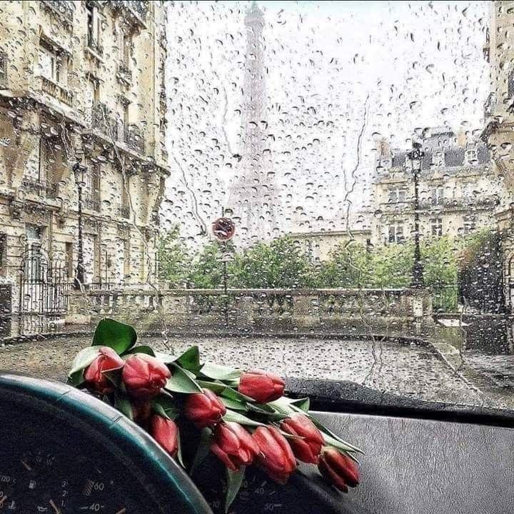صباح الورد احبتي الطيبين البسطاء المبتسمين دائما والذين يشبهون كل الوان الفــــرح صباحكم شتاء و برد و اجمل غيمة سعادة تمطر ع Rain Art Rainy Mood Love Rain