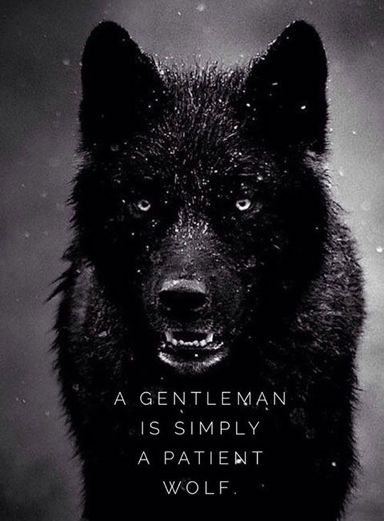 Truth About Guys Who Call Themselves A Gentleman